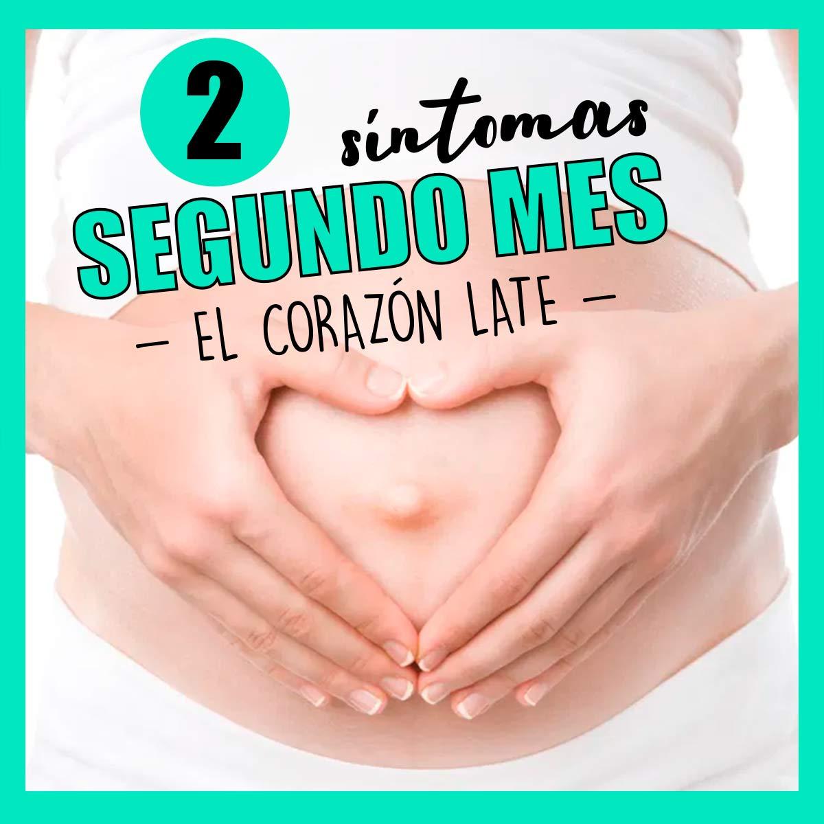 sintomas-segundo-mes-embarazo-2-mes-5-6-7-8--semanas-embarazada